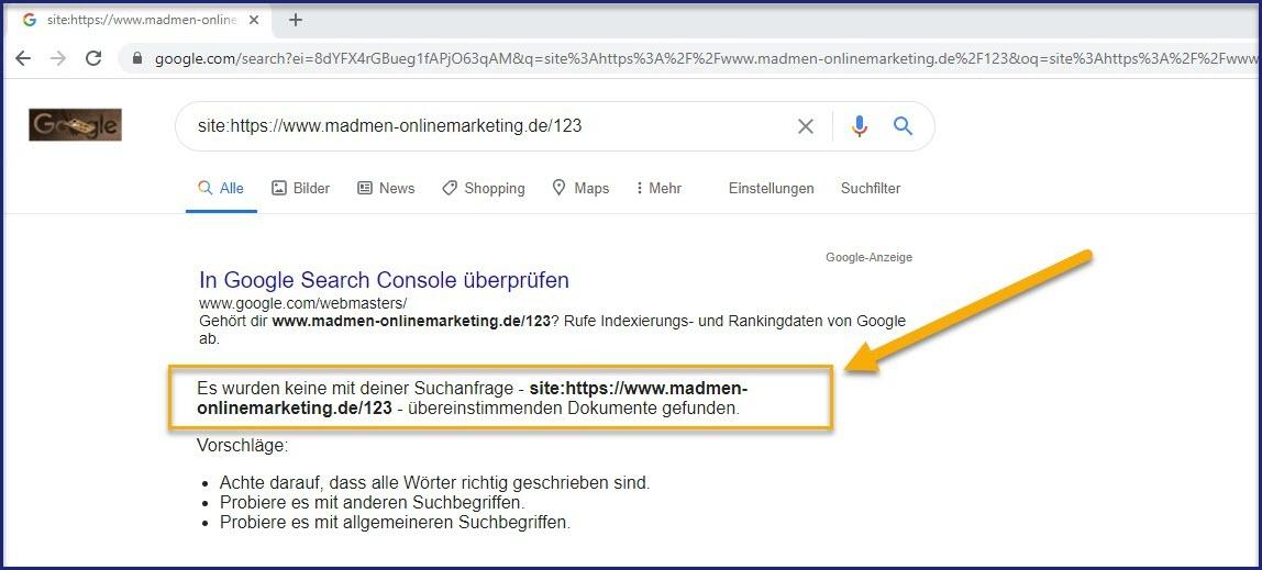 Website nicht im Google-Index