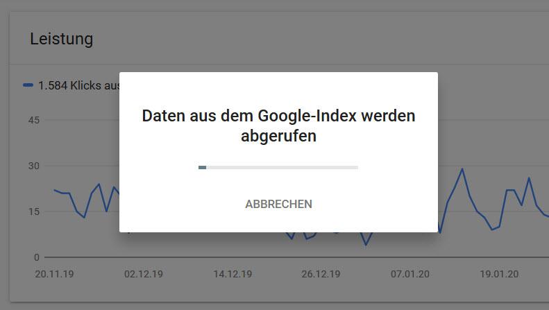 Google Index Prüfung